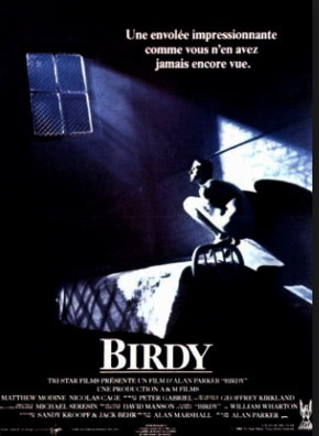 """Birdy"" Film"